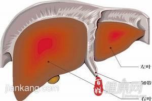 乙肝易并发哪些疾病呢