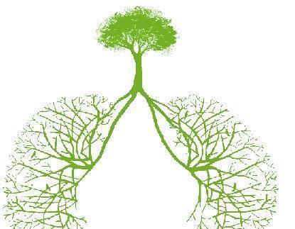 肺结核会传染吗?