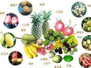 维生素D缺乏病的饮食保健方法