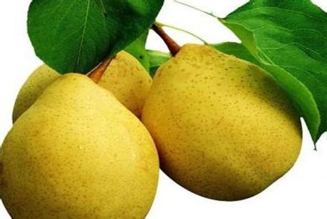慢性肾炎吃什么水果