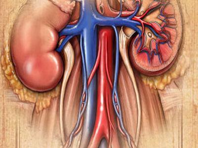 肾囊肿并发症是什么