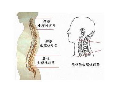 脊髓型颈椎病的治疗方法有哪些