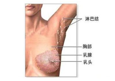 女人早期乳腺增生的治疗方法
