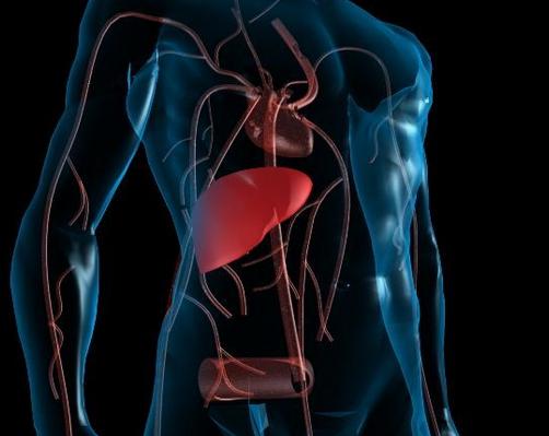 慢性肝炎的早期症状你知多少