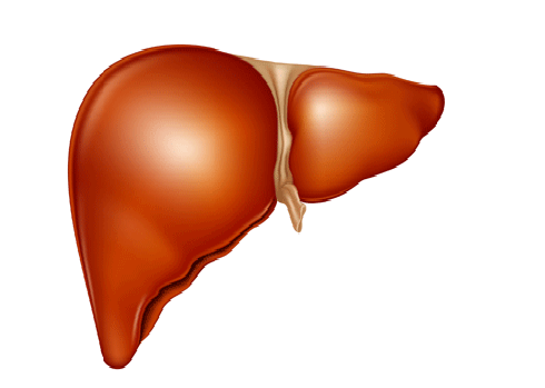如何发现乙型肝炎的早期症状