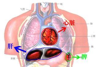 脾脓肿的诊断标准是什么呢