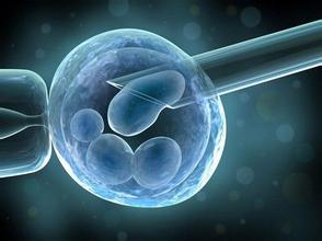 关于治疗女性免疫性不孕的方法的介绍