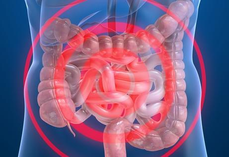 胆囊息肉的症状有哪些呢
