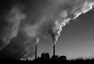 全球1/4人死于环境污染