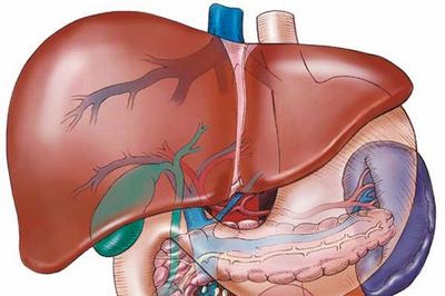 究竟肝硬化有些什么并发症呢