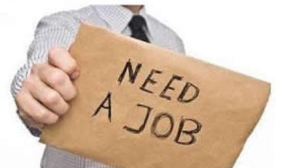 人社局:将阶段性降低养老及失业保险等