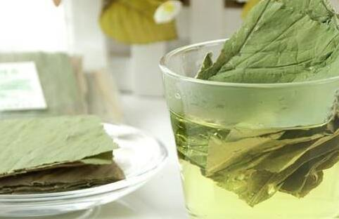 为你推荐专减水肿的荷叶减肥茶配方