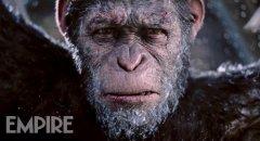 猩球崛起3电影彩蛋完整解析豆瓣影评 坏猴子重启猩球系列