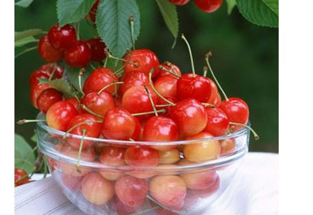 浅谈痛经吃什么水果好