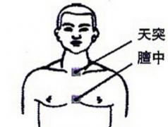介绍三伏贴敷贴的穴位图
