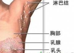 介绍治疗乳腺增生的穴位