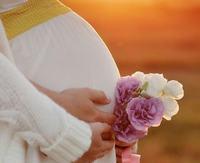 孕妇吃莲子改善血虚气虚体质