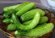 春季减肥食谱推荐 春吃黄瓜最减肥
