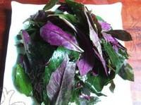 凉拌血皮菜的做法