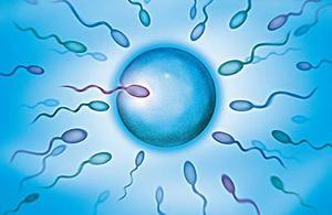 少精子症百科