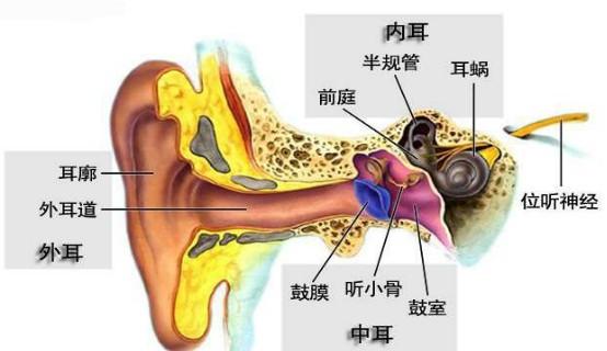 中耳炎百科