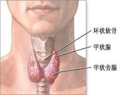 甲状腺结节百科
