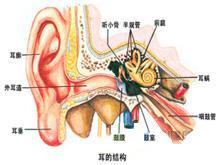 创伤性耳聋