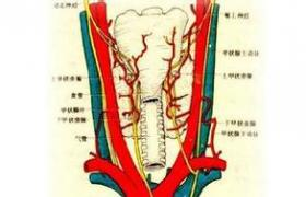 亚急性甲状腺炎