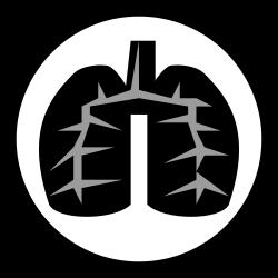 黑肺病百科