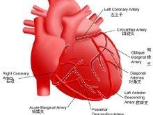 冠状动脉终止异常