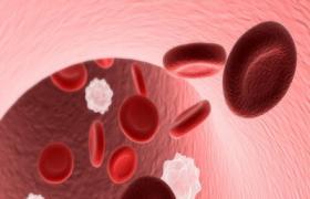 血常规介绍