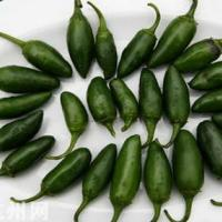 墨西哥辣椒