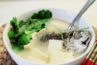 中医食疗催乳的方法有哪些