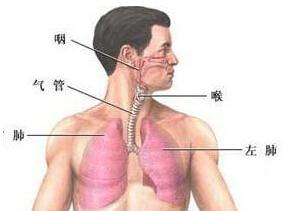 支气管痉挛
